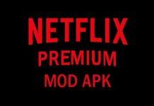 download-netflix-pro-mod