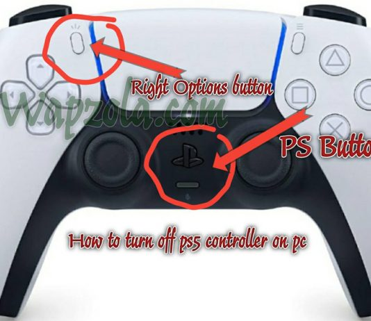 How to turn off ps5 controller on pc