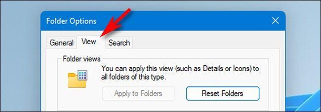 win11_folder_options_view_tab